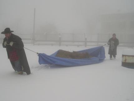 ... le prime faticate invernali per il fieno